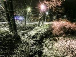 Burvīgā Madona pielaiko ziemu. Foto: Agris Veckalniņš 14
