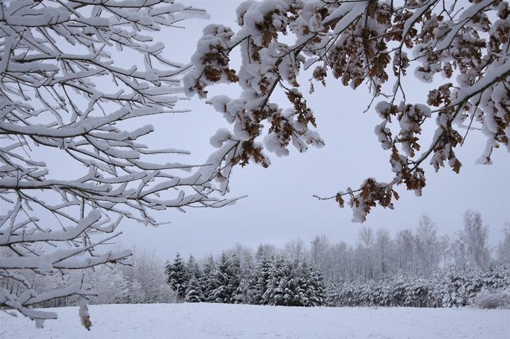 Kad Latgales pilsētu Ludzu pārklāj sniegs 296606
