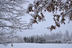 Kad Latgales pilsētu Ludzu pārklāj sniegs 2