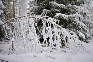 Kad Latgales pilsētu Ludzu pārklāj sniegs 3