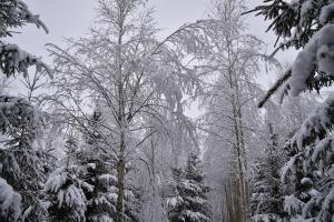 Kad Latgales pilsētu Ludzu pārklāj sniegs 4