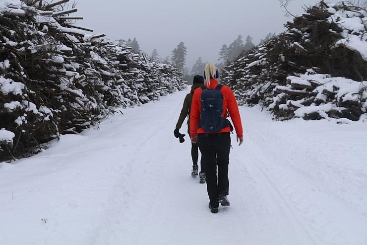 Travelnews.lv dodas 32 km pārgājienā Rendas apkārtnē Kuldīgas novadā 297848