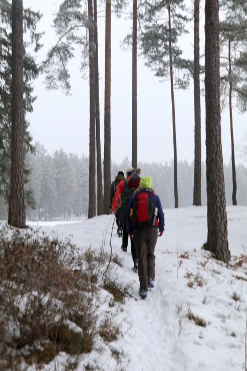 Travelnews.lv dodas 32 km pārgājienā Rendas apkārtnē Kuldīgas novadā 297853