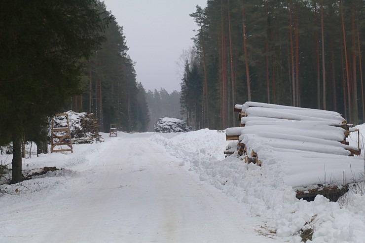Travelnews.lv dodas 32 km pārgājienā Rendas apkārtnē Kuldīgas novadā 297872