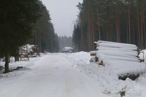 Travelnews.lv dodas 32 km pārgājienā Rendas apkārtnē Kuldīgas novadā 37