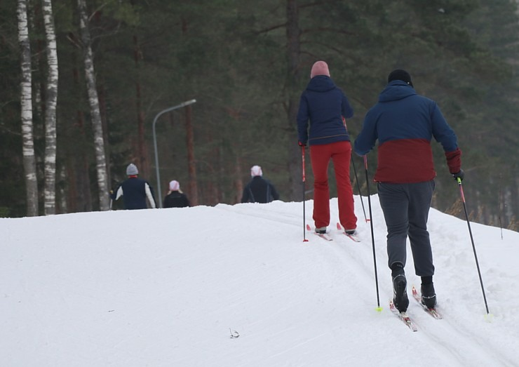Ogres Zilo kalnu distanču slēpošanas trases ir pieprasīts ziemas aktivitāšu centrs 297876