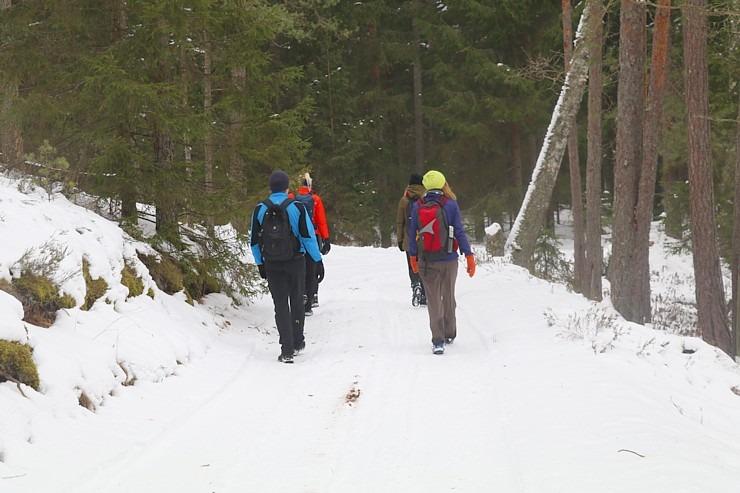 32 km pārgājiens Rendas apkārtnē, ko veic Travelnews.lv Kuldīgas novadā 297955