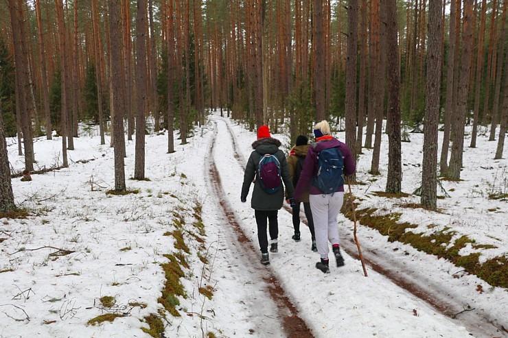 Travelnews.lv sadarbībā ar auto nomu «Sixt Latvija» dodas pārgājienā Silenes apkārtnē 298029