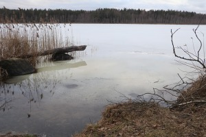 Travelnews.lv Baltkrievijas robežas tuvumā dodas 27 km pārgājienā, ko atbalsta auto noma «Sixt Latvija» 33