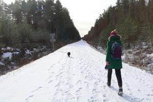 Travelnews.lv dodas 37 km pārgājienā Dundagas apkārtnē 2.daļa 12