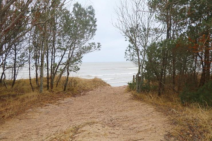Travelnews.lv dodas 20 km pārgājienā Pāvilostas apkārtnē 3.daļa 298419