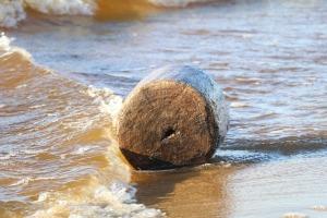 Mākslinieku dvēselēm šobrīd ir jādodas uz Carnikavas pludmali 21