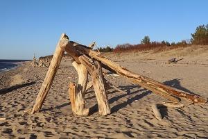 Mākslinieku dvēselēm šobrīd ir jādodas uz Carnikavas pludmali 31