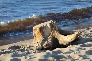 Mākslinieku dvēselēm šobrīd ir jādodas uz Carnikavas pludmali 33