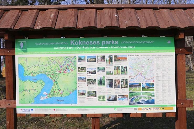 Kokneses parks starp Pērses un Daugavas krastiem ir burvīga atpūtas un pastaigu vieta 300071