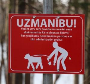 Kokneses parks starp Pērses un Daugavas krastiem ir burvīga atpūtas un pastaigu vieta 27