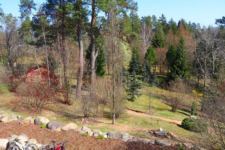 Travelnews.lv apmeklē dendroloģisko Špakovska parku Ogrē 300182