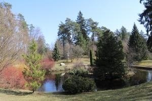 Travelnews.lv apmeklē dendroloģisko Špakovska parku Ogrē 1