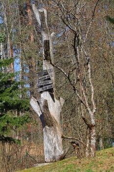 Travelnews.lv apmeklē dendroloģisko Špakovska parku Ogrē 14