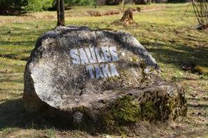 Travelnews.lv apmeklē dendroloģisko Špakovska parku Ogrē 19