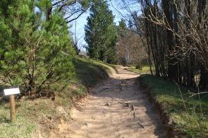 Travelnews.lv apmeklē dendroloģisko Špakovska parku Ogrē 8