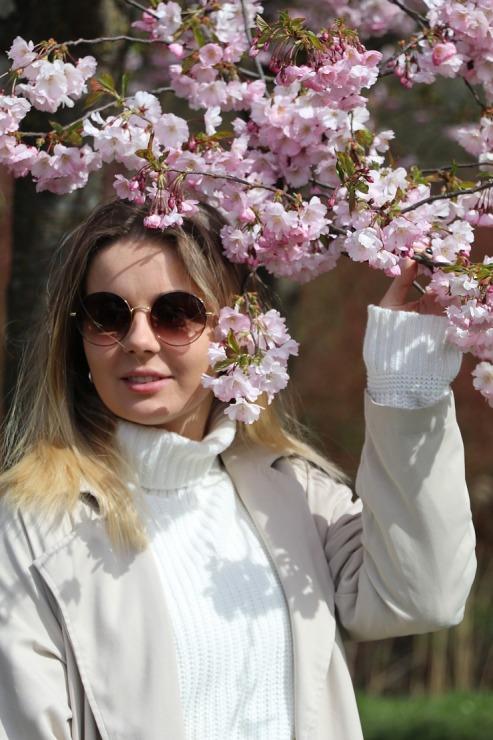 Sakuras krāšņi zied Uzvaras parkā Pārdaugavā 300504