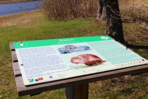 Travelnews.lv apmeklē Limbažu Lielezera dabas taku 34