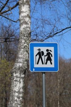 Travelnews.lv apmeklē Limbažu Lielezera dabas taku 43