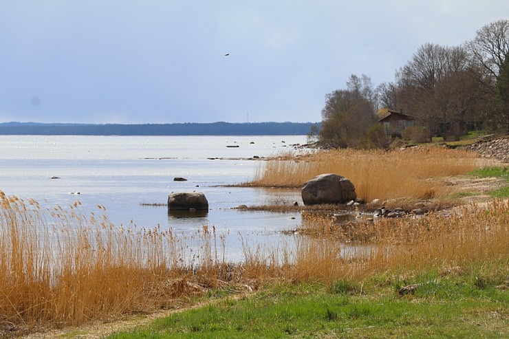 Travelnews.lv dodas 20 km pārgājienā gar Rīgas līča krastu Engures pusē 300862