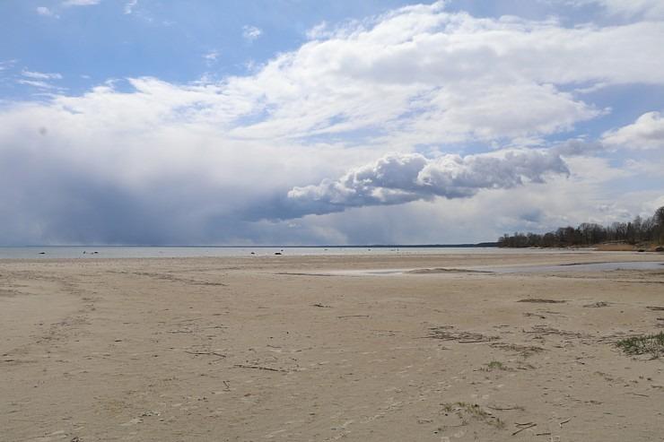 Travelnews.lv dodas 20 km pārgājienā gar Rīgas līča krastu Engures pusē 300867