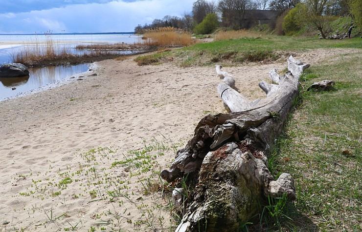 Travelnews.lv dodas 20 km pārgājienā gar Rīgas līča krastu Engures pusē 300868