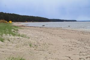 Travelnews.lv dodas 20 km pārgājienā gar Rīgas līča krastu Engures pusē 31