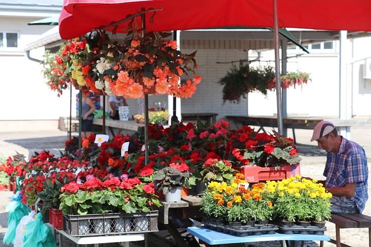 Travelnews.lv apmeklē Valmieras tirgu un iepazīst vietējās cenas 303692