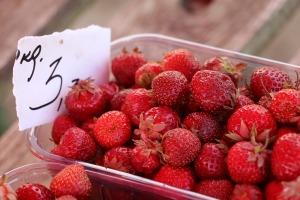Travelnews.lv apmeklē Valmieras tirgu un iepazīst vietējās cenas 7
