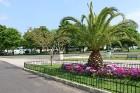 Pilsētas parks 7