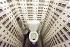 19.11.2008 ir tualetes diena, bet apmēram 40% pasaules iedzīvotāju nepazīst tualetes podu. Tas ir kļuvis arī par mākslinieku fantāzijas objektu, piemē 1