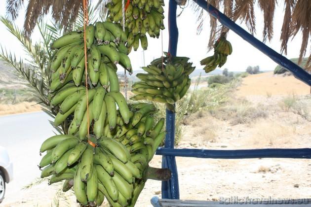 Par niecīgu naudiņu ikkatrs var nopirkt svaigus, ķīmiski neapstrādātus banāniņus... Liels PALDIES par bildēm ceļotājai Vinetai Rencei