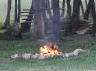 Daudzi atpūtnieki ēdiena pagatavošanai izmanto ugunskuru 14