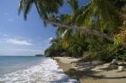 Šobrīd Dominikānā strauji kļūst populārs ekoloģiskais tūrisms un neskartas dabas meklējumi  Foto: GoDominicanRepublic.com 11
