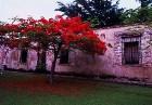 Tūristiem Dominikānas Republika ir iespēja iepazīt unikālu kultūru un apskatīt eksotiskas vietas Foto: GoDominicanRepublic.com 18