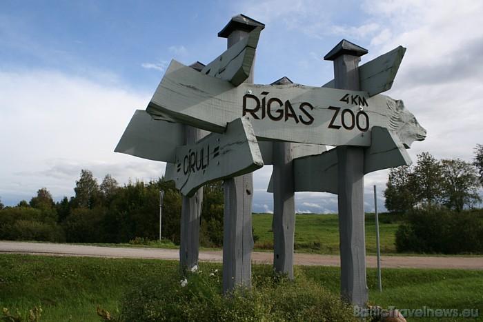 Rīgas zoodārza filiāle Cīruļi izveidota 1993. gada vasarā