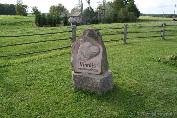 Zoo uzstādīts piemineklis lācim Vinnijam, kas mita Cīruļos no 1996. līdz 2004. gadam