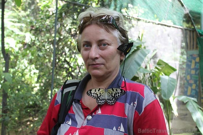 Fotosesija ar tauriņiem Cebu. Foto: Irīna Klapere, Relaks Tūre