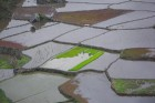Sagadas rīsu lauki Foto: Irīna Klapere, Relaks Tūre 3