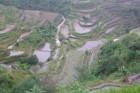 Banaue - 2000 gadu seni rīsu lauki Foto: Irīna Klapere, Relaks Tūre 6
