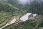 Banaue -2000gadu seni rīsu lauki Foto: Irīna Klapere, Relaks Tūre 7