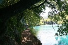 Plitvice ezeru teritorija ir paradīze pastaigu un pārgājienu cienītājiem, kā arī dabas mīļotājiem 17