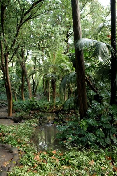 Botāniskais dārzs ir īpaši skaits pavasara un vasaras laikā, bet arī rudenī tas sagaida apmeklētājus ar brīnišķīgiem dabas skatiem www.andalucia.org