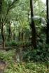 Botāniskais dārzs ir īpaši skaits pavasara un vasaras laikā, bet arī rudenī tas sagaida apmeklētājus ar brīnišķīgiem dabas skatiem www.andalucia.org 4