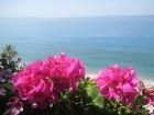 Kalabrija ir brīnumains reģions Itālijas dienvidos, kas palīdz atgūt fizisko un garīgo spēku, pieskarties vēsturei, atklāt neskartās dabas skaistumu u 97